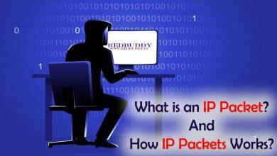 Photo of قالب یک بسته ی ip – توضیحات کامل